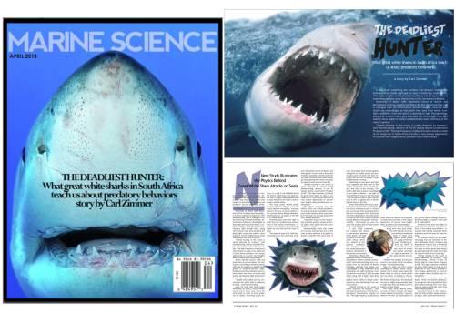 MarineScienceMagPic